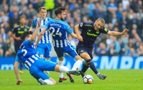 brighton and hove albion vs everton 122818